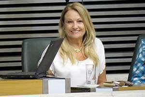A deputada Maria Lucia Amary enalteceu o suporte do CRF-SP à elaboração do projeto